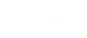 Nexstar Media Group, Inc  | A Leading Local Media Company